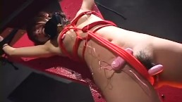 Japanese babe doesn't seem annoyed after getting bound and toyed unce