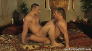 Preview 1 of gay kamasutra from asia