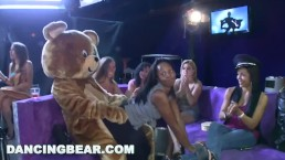 DANCING BEAR - Starting The Party Right With Big Dicks Swinging @ Bitches